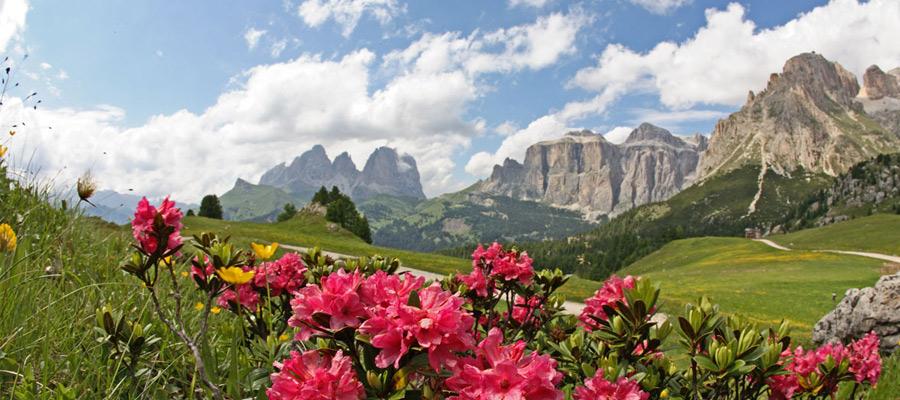 Appartamenti Austria Montagna