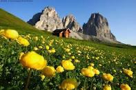 Offerta Montagna Giugno 2013