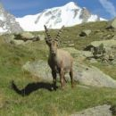 Offerta Vacanza Benessere in Valle d'Aosta.