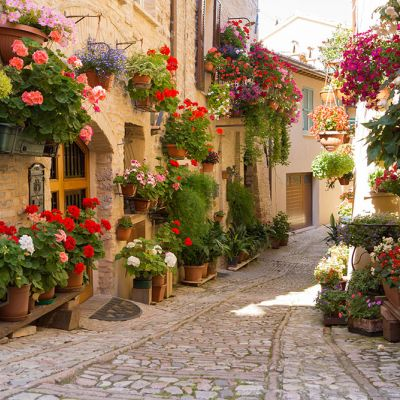 Finestre balconi vicoli fioriti Spello