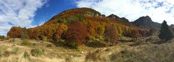 Vita Alpina Foliage  sull'altopiano più bello del mondo Piccole Dolomiti...