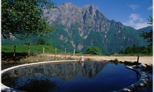 A spasso sul sentiero dei Grandi Alberi