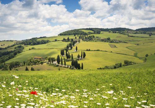 Ponti di Primavera in Toscana