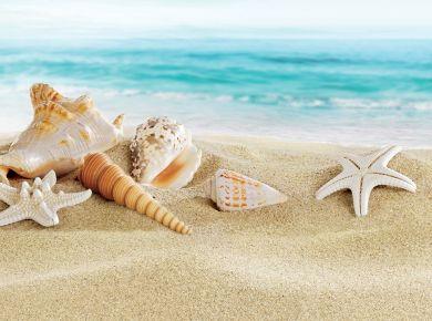 Предложение для летнего отдыха в Римини