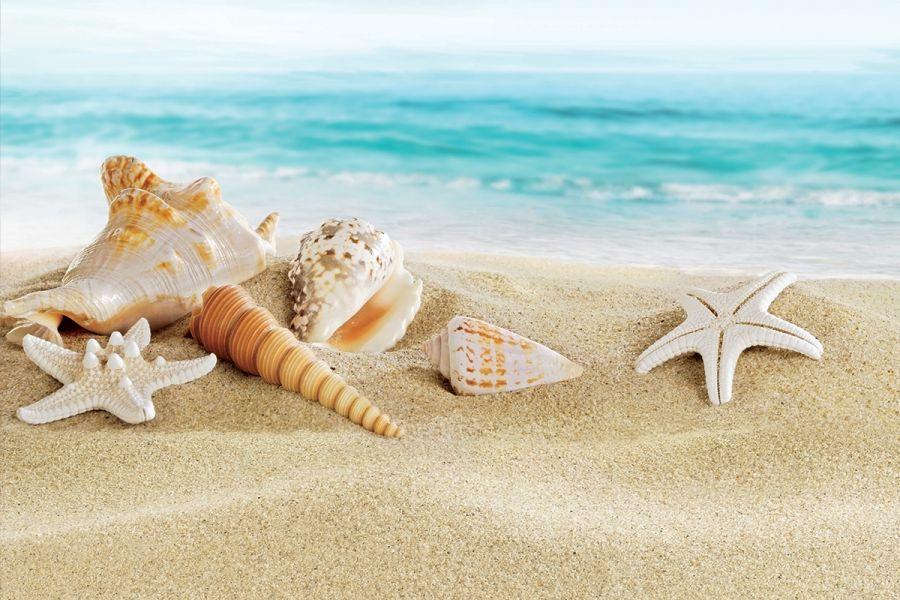 Sonderangebot Sonne und Meer