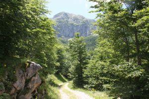Splendida Settimana in Montagna a partire da 289 Euro