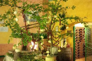 Week end Enogastronomici  alla Ricerca dei Funghi e delle Castagne per conoscere i Sapori e le Tradizioni Antiche del Molise