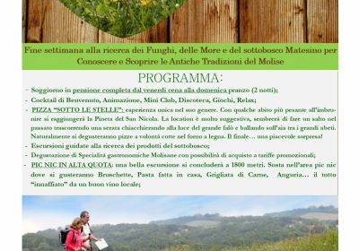 Superofferta Week End  E...State in Montagna!