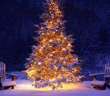 Magico Natale in montagna