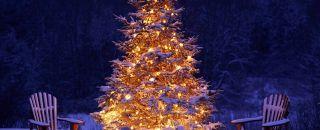 Magic Christmas in Bormio