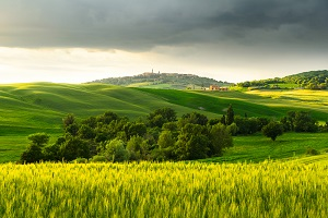 Relax and health care in Tuscany!