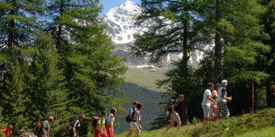 Cammina & Gusta.. la Valtellina a S.Caterina Valfurva!