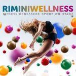 Wellness 2017