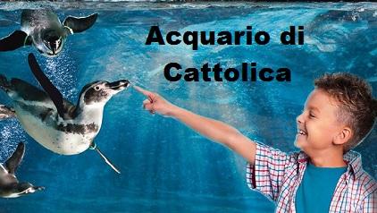 Pacchetti con biglietti Acquario di Cattolica