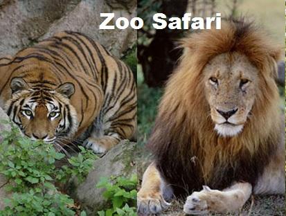 Zoo Safari Ravenna nuovo parco davanti a Mirabilandia