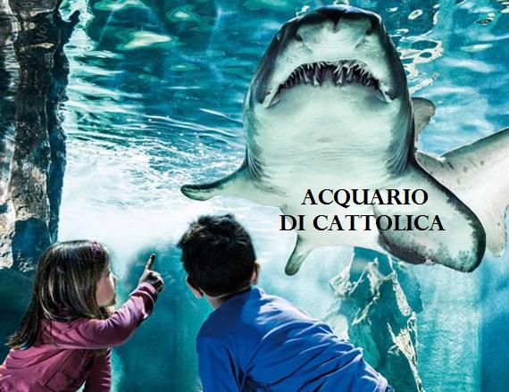 Pacchetti Hotel e Acquario di Cattolica 2017