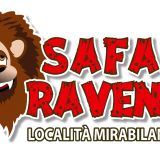 Offerta Hotel + Zoo Safari