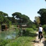 Offerta settimana Bicicletta e Territorio a Lido di Savio