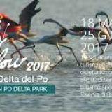 Primavera Slow  Percorsi naturalistici Valle del Delta del Po