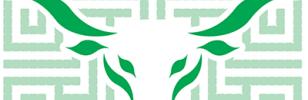 Dedalo il labirinto di mais della Riviera Romagnola più grande d' Europa a Lido di Savio