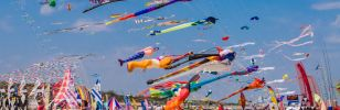 The Festival of kites 2017