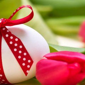 Offerte Pasqua 2016 a Pesaro
