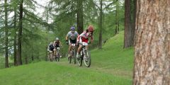 Eventi bicicletta Valtellina
