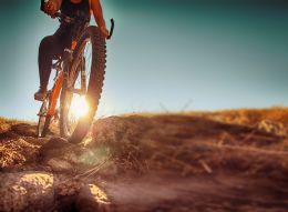 Bike packages in apartments in Valtellina