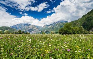 Offerta last minute luglio a Livigno