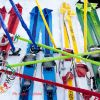 Skieda 2016