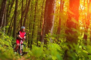 Offerta Vacanze Bici Emilia Romagna Offerte Bike Hotel Porretta ...