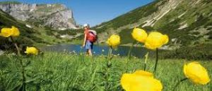 HOTEL + DISCOUNTET  OFFER  FOR  DOLOMEETCARD, TREKKING   WHAT A   PASSION !