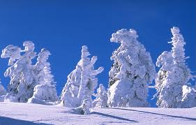 January - February and March offer hotel 7x6  skipass -15% rent-20%