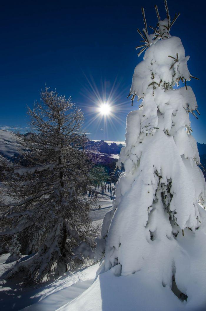 Ski Special for Kids offerta Val di Fassa Moena
