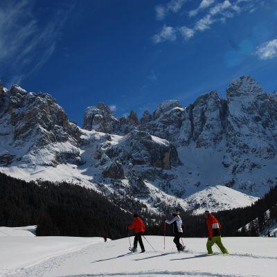 Offers ski in 2021 in Trentino