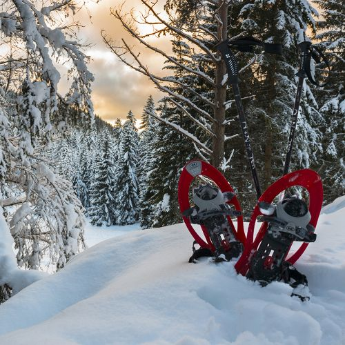 Week of snowshoes in San Martino di Castrozza in the Dolomites