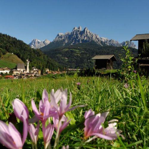 Offerte estate 2016 in montagna