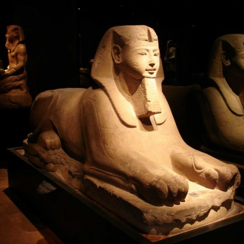 Offers for the Egyptian Museum in Turin
