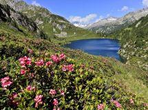 Conosci la montagna e prova di arrampicata con le guide alpine di Madonna di Campiglio