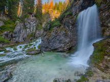 Il Forest Bathing di Vallesinella per il vostro benessere