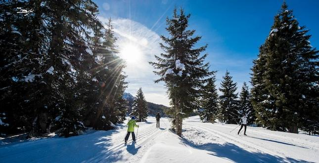 Discover cross-country skiing trails