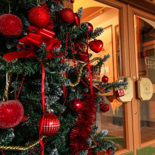 Settimana di Natale a San Martino di Castrozza sulle Dolomiti