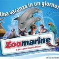 Offerta Hotel Zoomarine e Parco Giochi Magicland