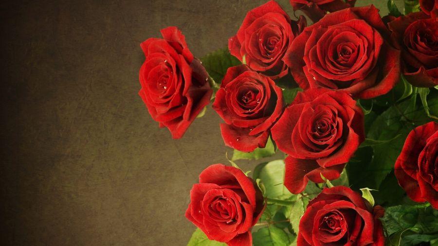 Sognare la fuga d'amore per San Valentino !