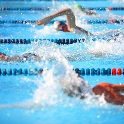 Offer swimming championships Riccione 2020