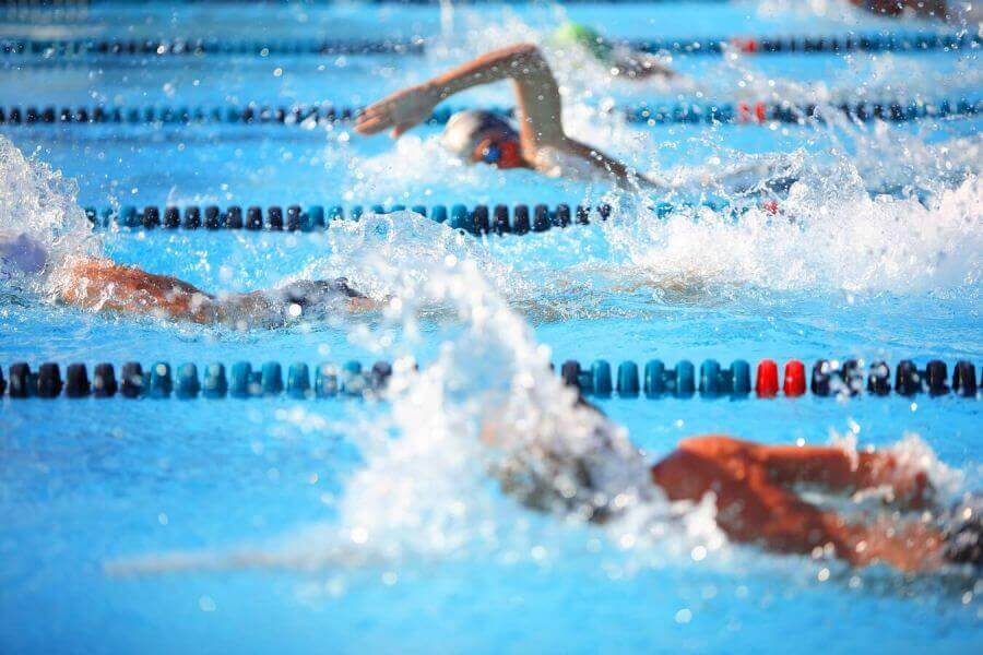 Offer swimming championships Riccione 2020