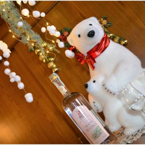 Offerta  Natale a San Martino di Castrozza