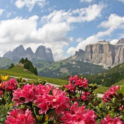Offerta Vacanze Estate Montagna