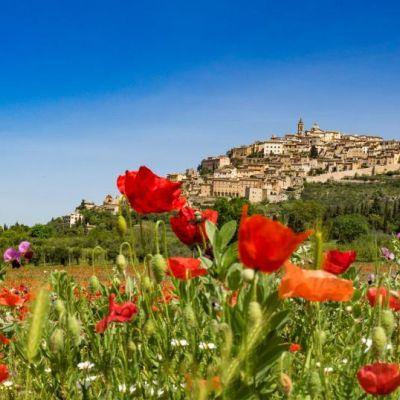 Estate Trevana in Umbria