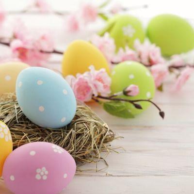 Easter offer 2019 Rimini